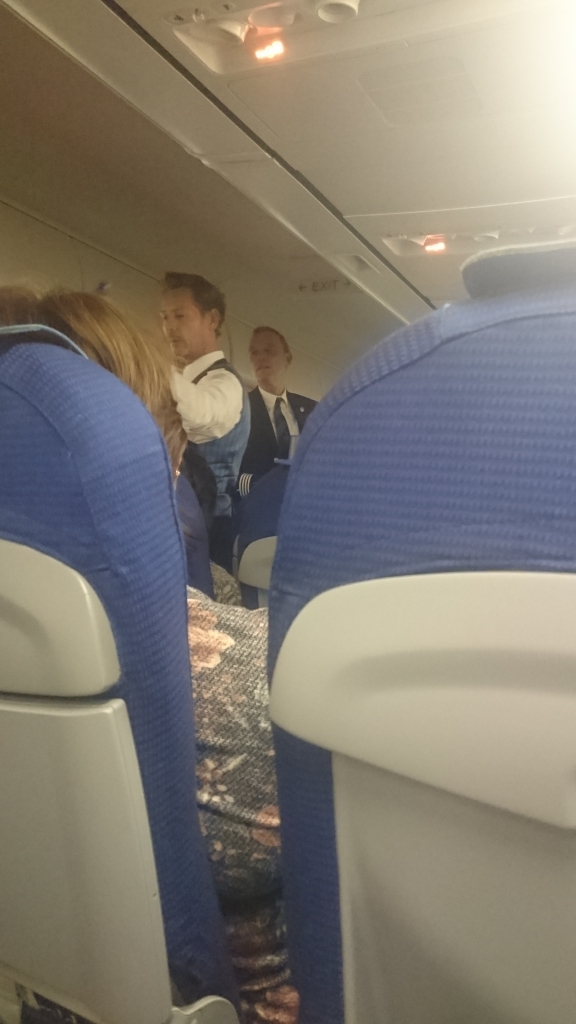 Air France KLM (Эйр Франс КЛМ) - Супер комфортный перелет