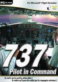 737 Pilot in Command (Гонки)