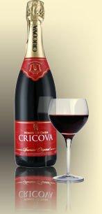 Шампанское Молдавии Красное Полусладкое ТМ Cricova