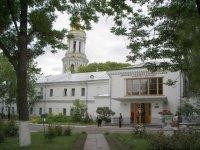 Надслучанский институт
