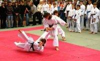 Детско-юношеская школа киокушин каратэ