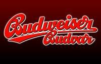 Пиво Budweiser (Будвайзер)