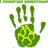 Благотворительный фонд помощи бездомным животным