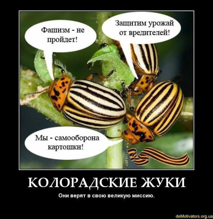 Турчинов Александр Валентинович -