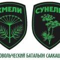 Отзыв о Михаил Саакашвили: