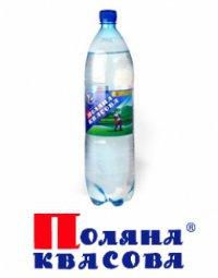 Вода Минеральная Газированная ТМ Поляна Квасова