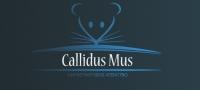 Компания Хитрая мышь (Callidus mus)