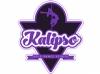 Kalipso Pole Dance Studio