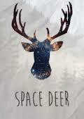 Курсы английского языка Space Deer