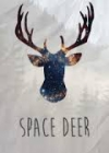 Курсы английского языка Space Deer отзывы