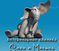 Ветеринарная клиника Слон и Моська