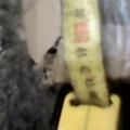 Отзыв о НОВАЯ ПОЧТА (Нова Пошта): Обман НОВОЙ ПОЧТОЙ за вес пересылки в два раза!!!