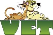 Клиника мелких животных