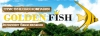 Туристическое агенство Голден Фиш отзывы
