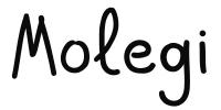 Интернет-магазин Molegi