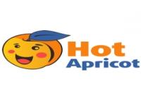 Интернет-магазин Hot Apricot