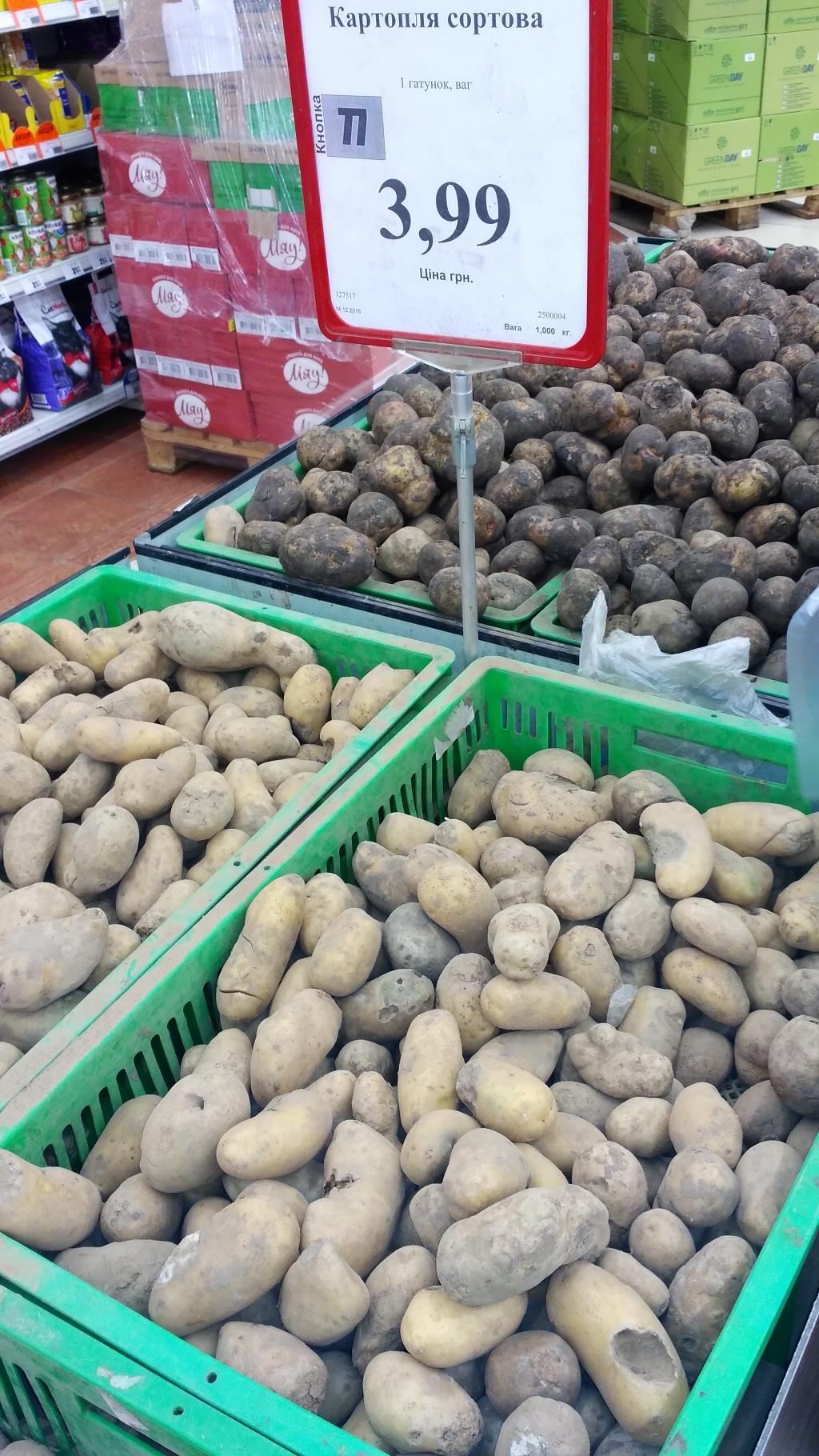Varus market, Запорожье - Вот такую картошку предлагают купить в Varus в Запорожье на Космосе