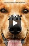 Собачья жизнь отзывы