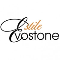 Компания EvoStone