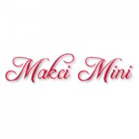 Интернет-магазин одежды «Макси-Мини»