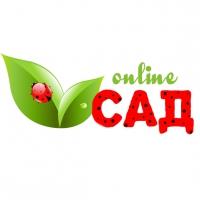 САД-online