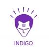 """Компания """"Indigo"""""""
