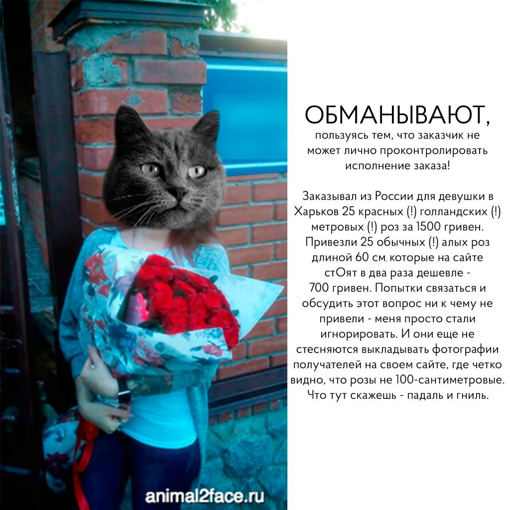 Sendflowers UA - Обман