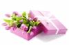 Felicita-Flowers отзывы