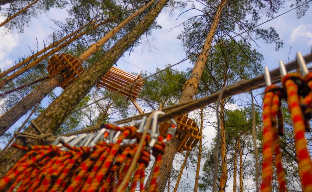 Бодо - Веревочный парк на двоих (подарок впечатление от Бодо)