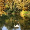 Отзыв о Паркове місто: Осень