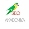 Сео Академия (Seo-akademiya)