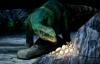 Выставка динозавров на ВДНХ