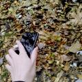 Отзыв о Интернет-магазин Мир Смартфонов: Спасибо за красивый смартфон!