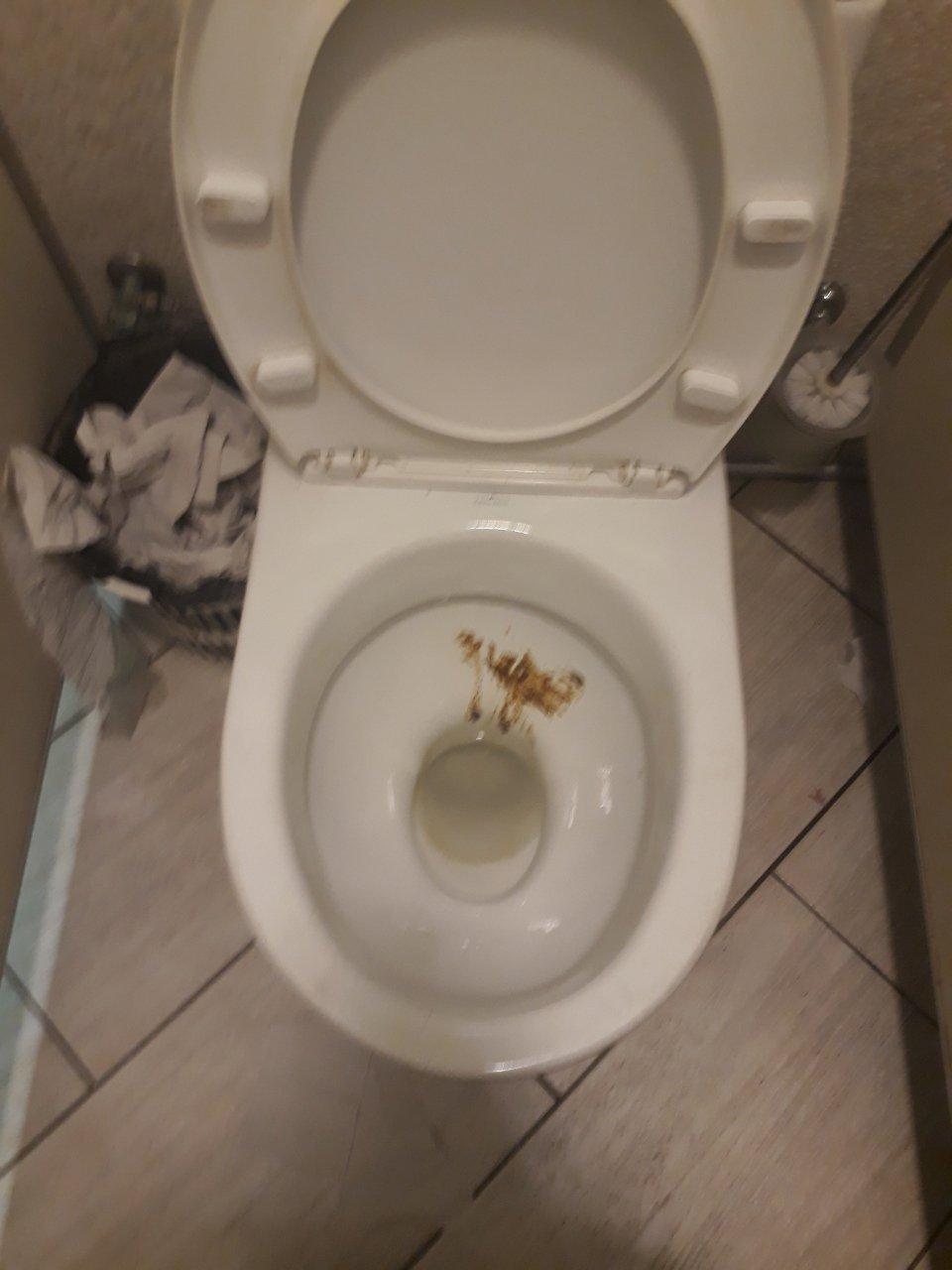Дафи - Унитазы грязные