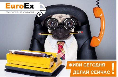 Компания EuroEx (ЕвроЭкс)