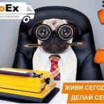 Компания EuroEx