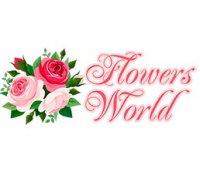 flowersworld.com.ua интернет-магазин
