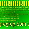 Компания Agrogrup отзывы