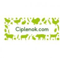 ciplenok.com интернет-магазин