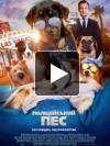 Фильм Полицейский пес (Псы под прикрытием) 2018 отзывы
