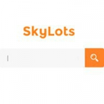 SkyLots Интернет-аукцион