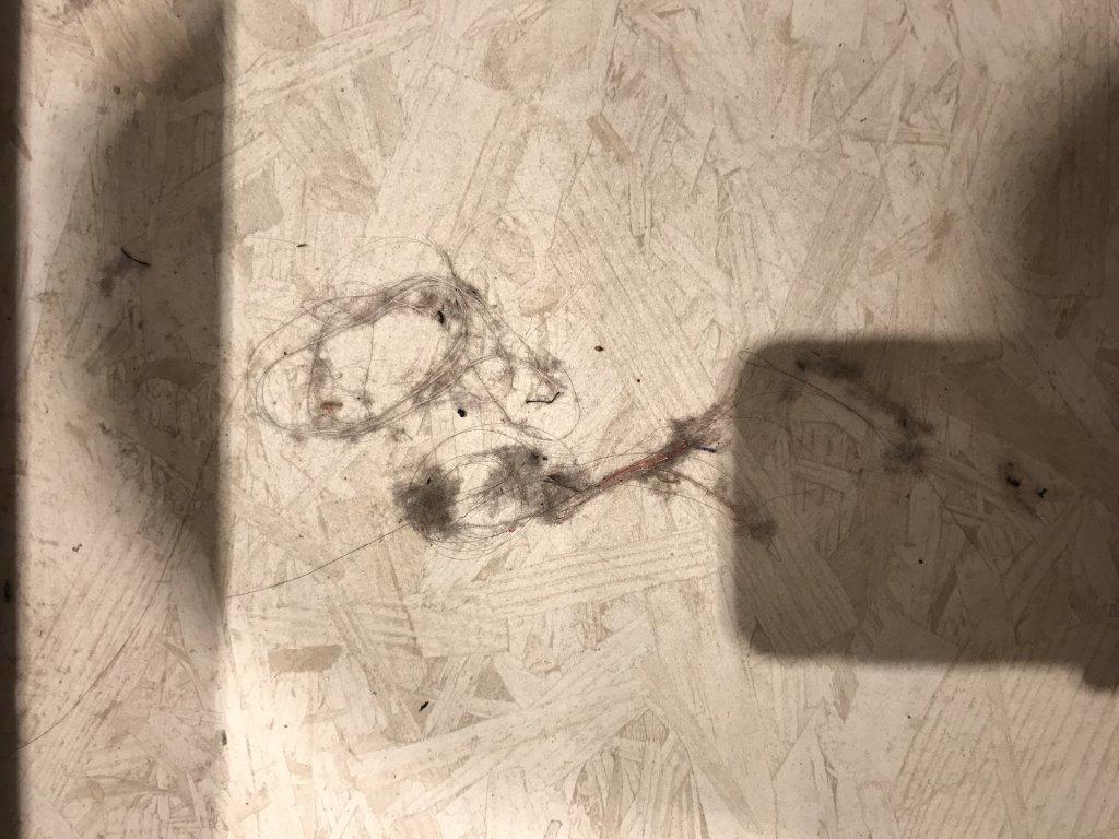 ТРЦ Ривьера Шоппинг Сити - Шокирует отсутсвие ковриков в примерочных