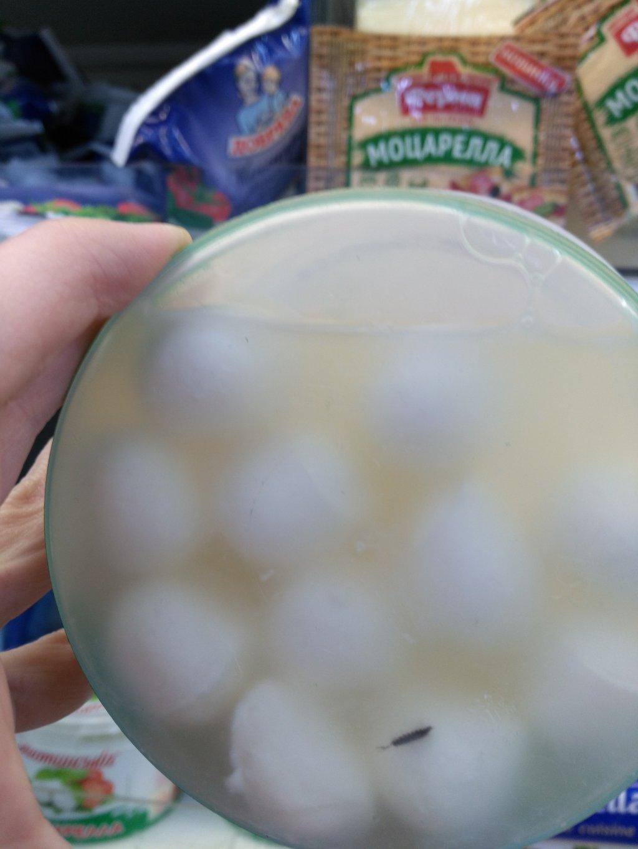 Яготинский маслозавод - Моцарелла с мокрицами