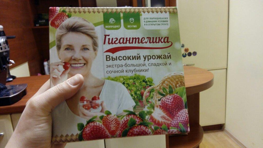 Giantelica - Ягодница для выращивания клубники дома