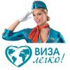 """Компания """"Виза Легко"""" отзывы"""