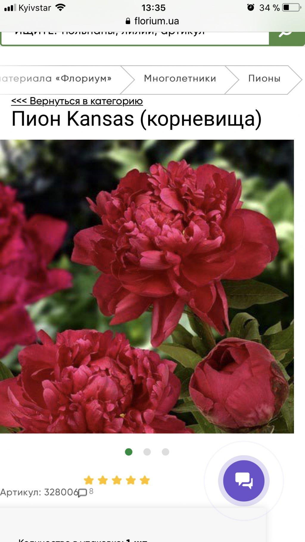 Интернет магазин цветов Флориум - Совсем не то!