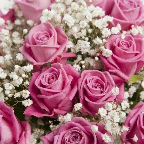 Kvitolux.com.ua - Заказ цветов на сайте квитолюкс