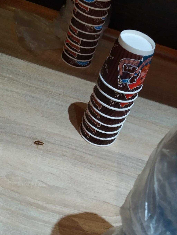 """Сеть кофеен """"Aroma Kava"""" - Арома в Днепре"""