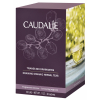 Дренирующий БИО-чай антицеллюлитная программа Caudalie Draining Organic Herbal Teas отзывы