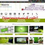 detect-od.site отзывы